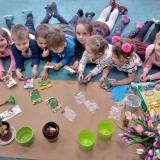 Wiosenne ogródki przedszkolaków