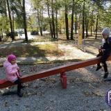 Odwiedziny parku